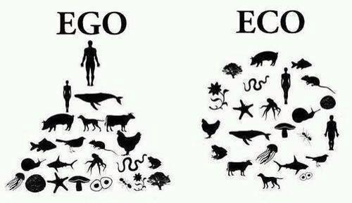 Earthaliens